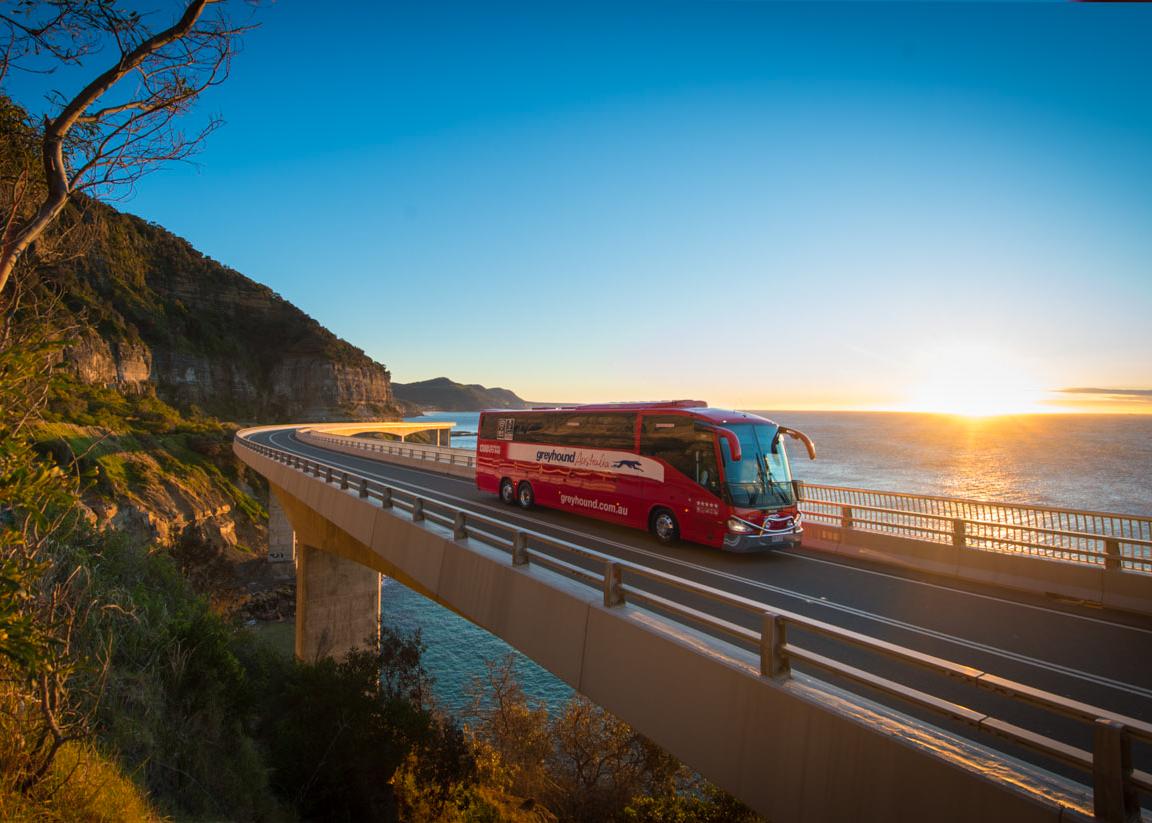 Viaggi in Bus ElodeaViaggi